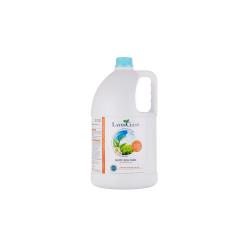 Nước Rửa Chén Bát Hương Quế (5L) - Layer Clean