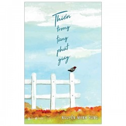 Thiền Trong Từng Phút Giây - Nguyễn Mạnh Hùng (ThaiHa Books)
