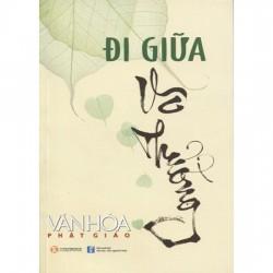 Đi Giữa Vô Thường - Tạp Chí Văn Hóa Phật Giáo (ThaiHa Books)